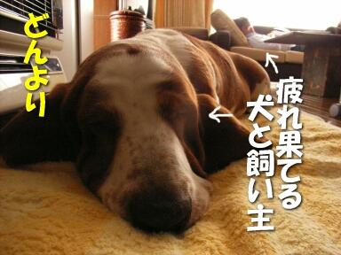 2008_04_ope2.jpg