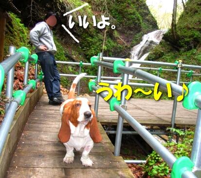 2008_05_mokudo2.jpg
