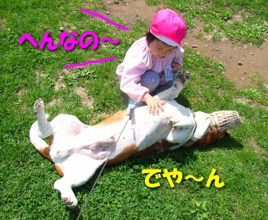 2008_5_kids1.jpg
