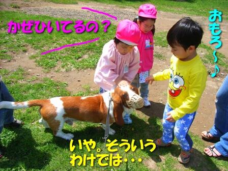 2008_5_kids2.jpg