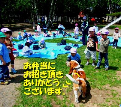 2008_5_kids4.jpg
