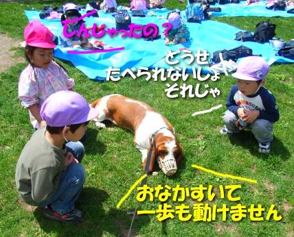 2008_5_kids5.jpg