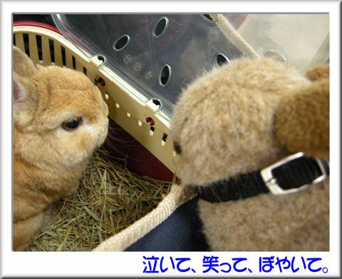 03マゼ村氏と会う.jpg