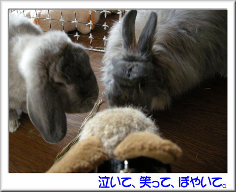 10初めまして~!.jpg