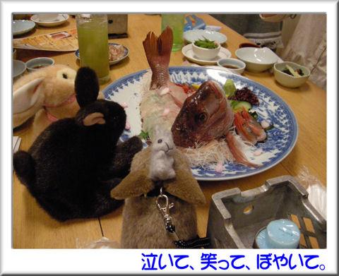 14豪華な料理.jpg