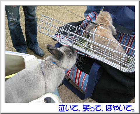ジャンくん無視.jpg