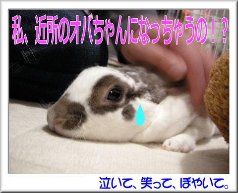 シェリオバちゃん?.jpg