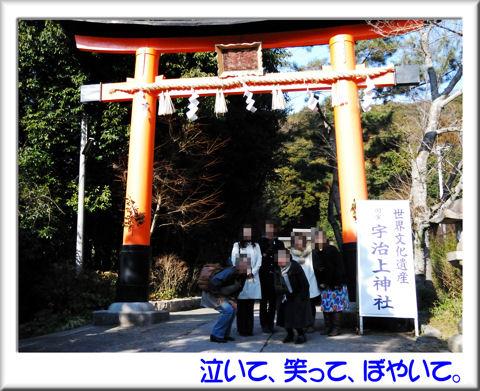 11宇治上神社.jpg
