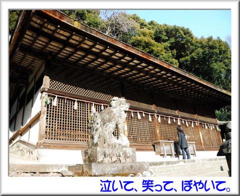 13宇治上神社本殿.jpg