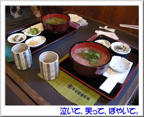 23抹茶うどんと紫蘇にゅうめん.jpg