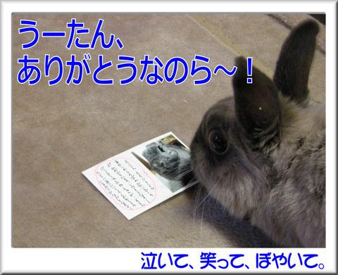 ありがとう!うーちゃん.jpg