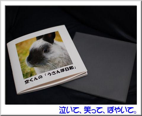 空くんの写真集.jpg