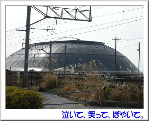 長浜ドーム.jpg