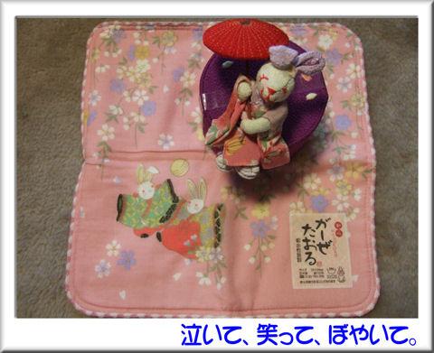 ガーゼタオルとウサ人形.jpg