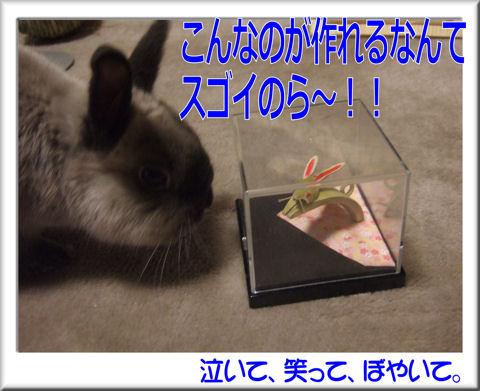 スゴイのら~!!.jpg