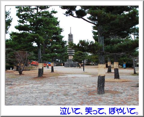 塔の島公園内.jpg