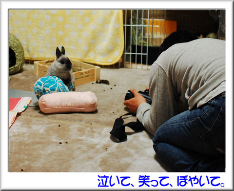 05うさマロさん撮影中!.jpg