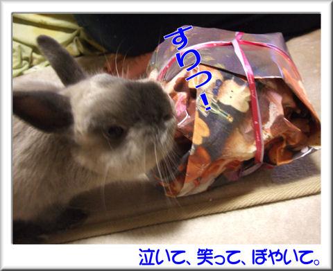 プレゼントにすりっ!.jpg