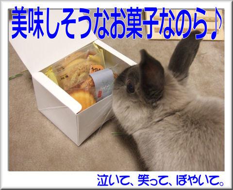 美味しそうなお菓子.jpg