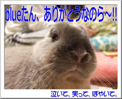 blueさんありがとう~!.jpg