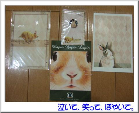 07しらとあきこさん購入品.jpg