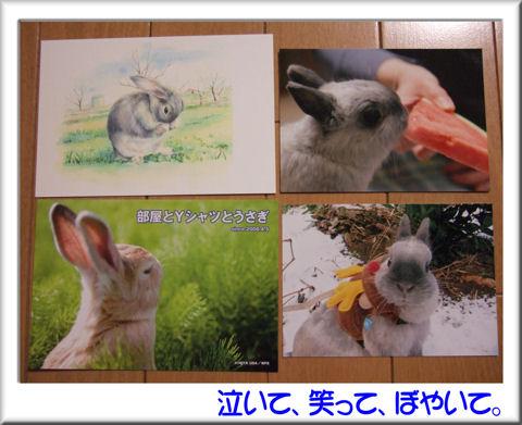 09ポストカード&写真.jpg