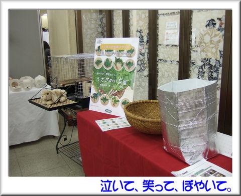 06川井ブース.jpg