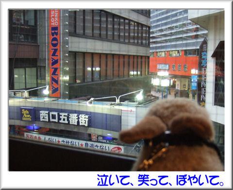 横浜に着いたのれす.jpg