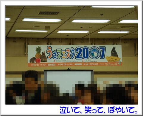 うさフェス会場.jpg