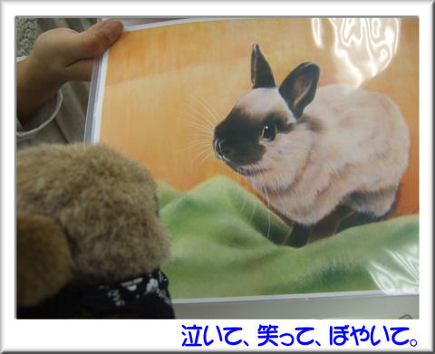 空くんの肖像画.jpg