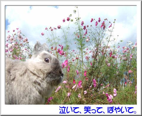 空くん降り立つ!.jpg
