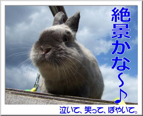 絶景かな~♪.jpg