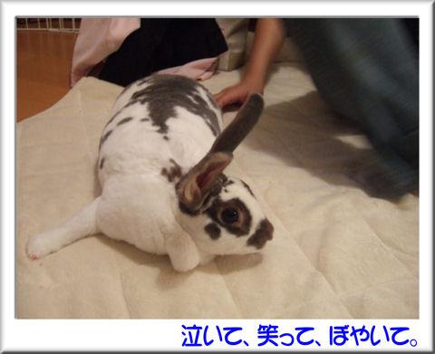 シェリちゃん.jpg