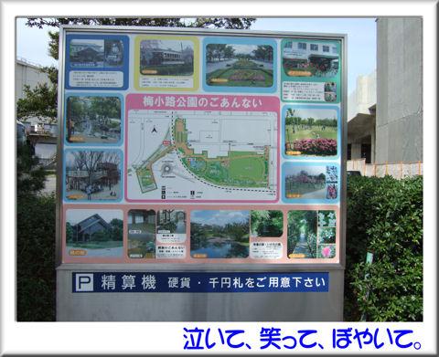 梅小路公園案内図.jpg