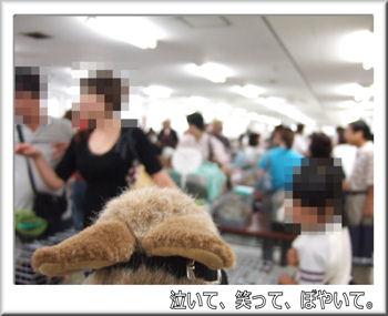 会場の熱気.jpg