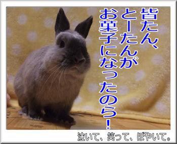 とーたんがお菓子に!.jpg