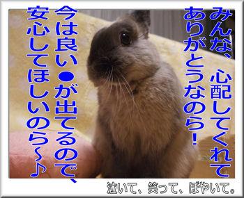 心配ありがとう!.jpg