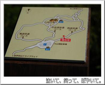 遊歩道登山コース.jpg