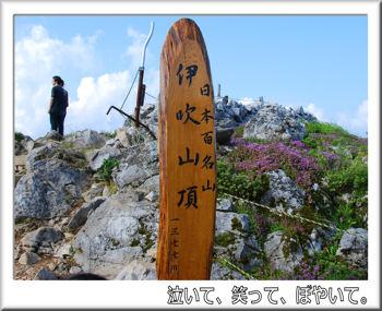 標高1377メートル.jpg