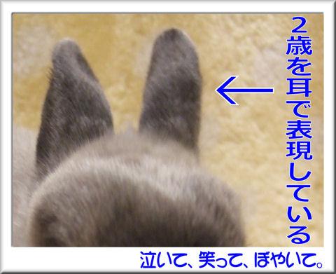 Q.3.jpg