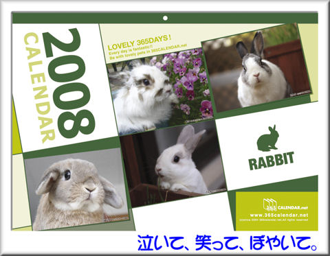 WEB_ALLRABBIT_cover.jpg