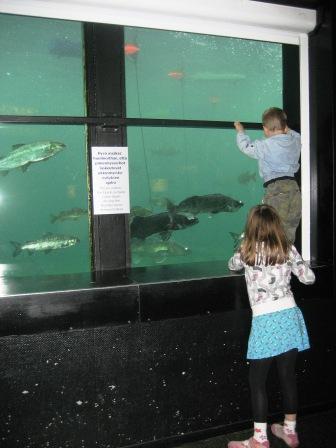 水族館にて