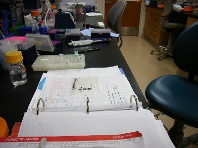 金曜日の実験室