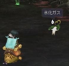 yadorigi.jpg