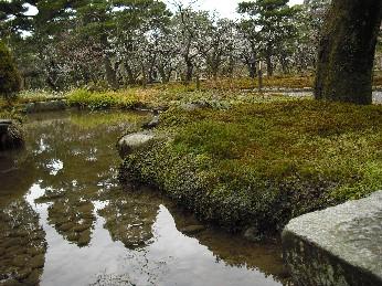 兼六園 日本庭園
