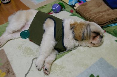 疲れちゃった