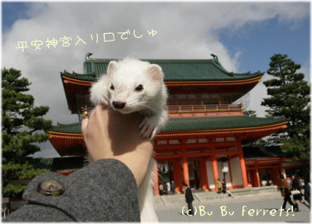 heianjinguu_p.jpg