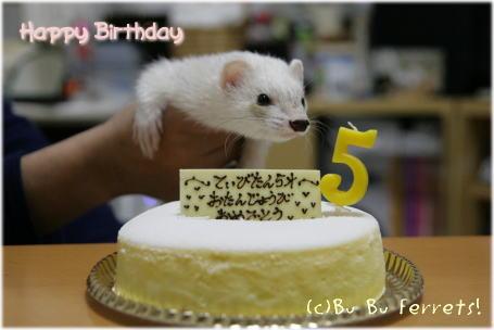 thibi-birthday_p.jpg