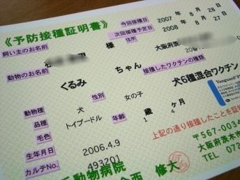 20070828124251.jpg
