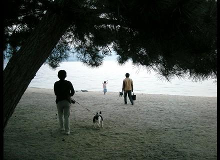 近江舞子浜です
